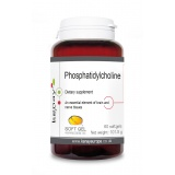 Phosphatidylcholine, 60 softgels – dietary supplement