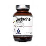 Berberine REBERSA™, 60 capsules - dietary supplement