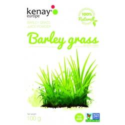 Barley grass juice powder 100 g