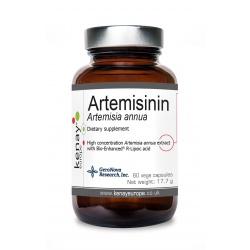 Artemisinin Artemisia annua, 60 vege capsules – dietary supplement